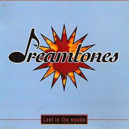 De 993 bedste danske sange: 'I'm Not Alone' (1997)